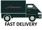 Fast-delivery-new-1024x730